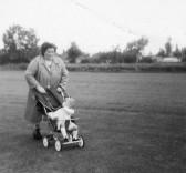Hazel Martin in Pymoor.