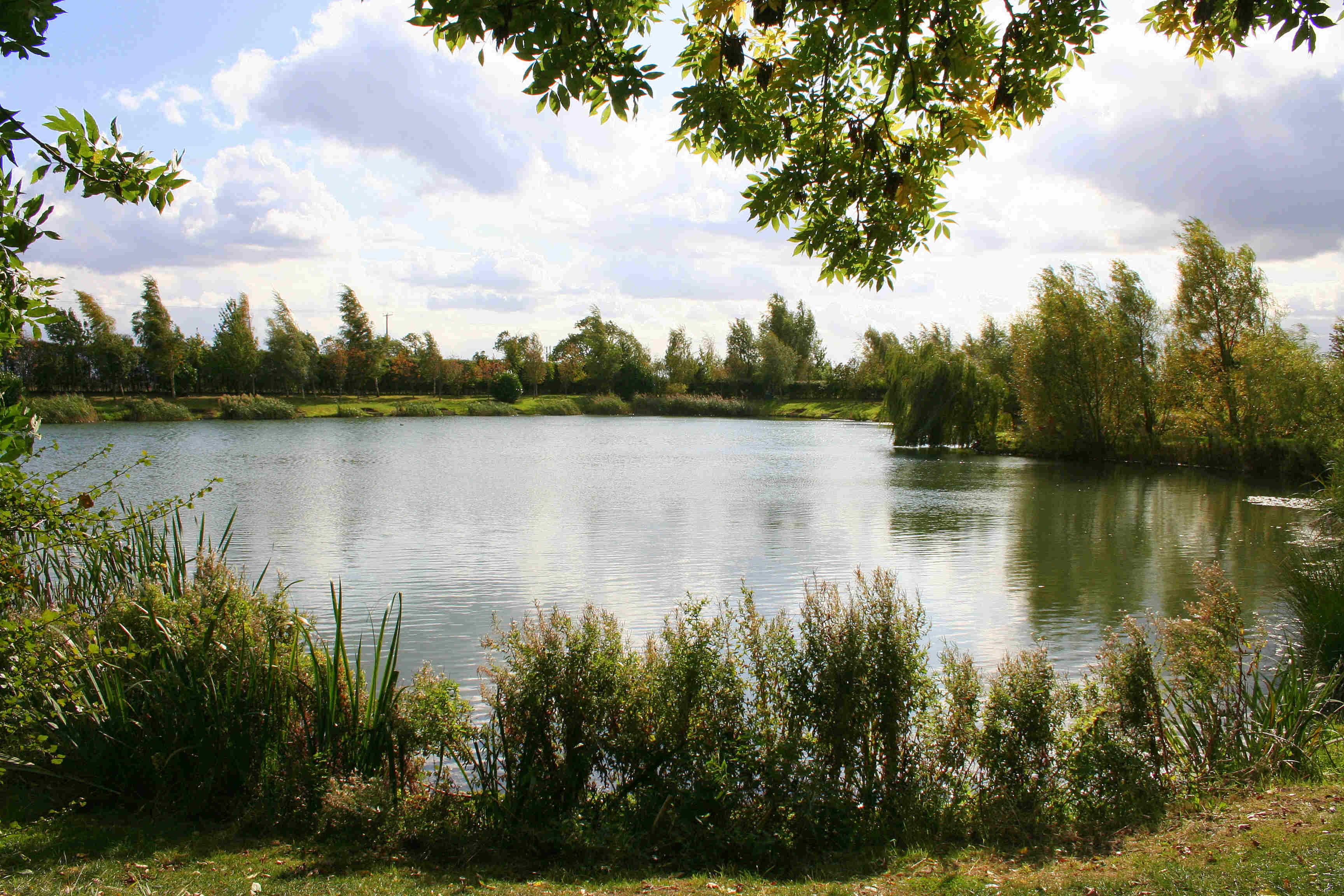 Oxlode Fishing Lakes Oxlode Pymoor Rural Natural Pymoor