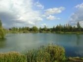Oxlode Fishing Lakes, Oxlode Pymoor.