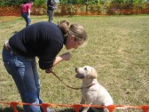 Jake gives last minute instructions to Tina Parson before the Pymoor Show Dog competition 2008.