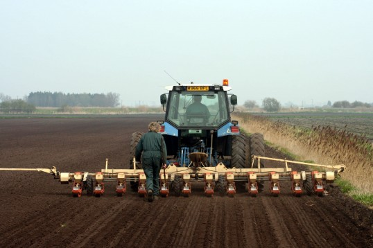 Roger Parson and Tony Rudderham drilling Sugar Beet on land at the eastern end of Pymoor Lane, Pymoor, 2007.
