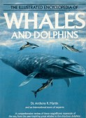Dunkirk, Pymoor resident Dr Tony Martin is a respected expert on Whales and Dolphins and has written may books and articles on the subjuct.