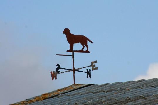 The weather vane at Lane Farm, Pymoor Lane, Pymoor.