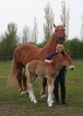 Gilly Banks, of Dunkirk & Pymoor, with her Suffolk Punches, Willow & Whisper, 2009.