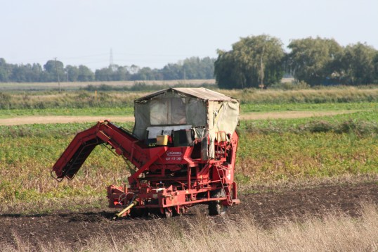 Farm machinery in Pymoor, used when harvesting and sorting potatos 2008.