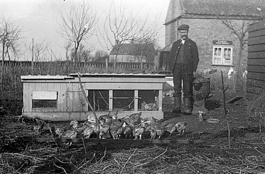 Charles Brown, the Pymoor village Postman, stands with his chickens in his garden on the corner of Main Street and Pymoor Lane.