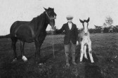 Reg Butcher of Pymoor with horse & foal.