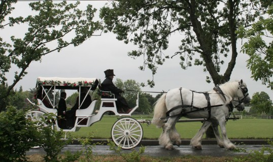 The Bride & Groom arrived in a horse drawn carriage for their wedding reception at the Pymoor Cricket Clubhouse in Pymoor Lane, Pymoor 2010.