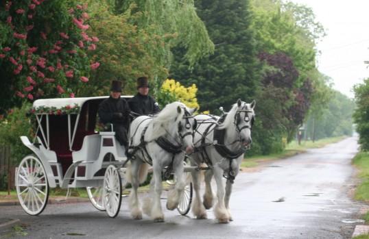A horse drawn wedding carriage in Pymoor Lane, Pymoor 2010.