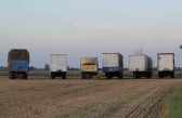 Trailers parked on a field at Oxlode Farm, Pymoor.