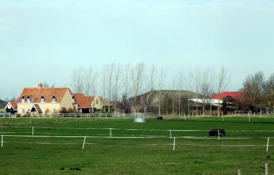 Fodder Fen Farm, Little Downham, near Pymoor, 2011.