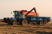 Combine harvesting in Pymoor.