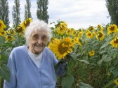 Joan Saberton admires a field of sunflowers in Straight Furlong, Pymoor.