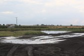 Following a very heavy hailstorm some of the agricultural fields in Pymoor were flooded. 2012