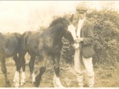 George Martin looking after a mare and foal in Pymoor.