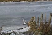 The frozen Hundred Foot River, Oxlode, Pymoor.