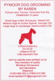 Advertisement flyer for Pymoor Dog Grooming of Pymoor Lane, Pymoor, 2011.