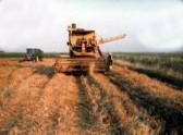 Combining the last row in a field in Pymoor.