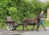 Graham Lark with a donkey and cart in Main Street, Pymoor.