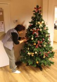 Christine Saberton decorates the ChristmasTree in the Pymoor Cricket & Social Club, Pymoor Lane, Pymoor 2012.