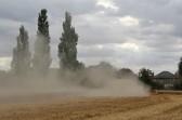 Harvesting the wheat on Graham Lark's field off Pymoor Lane.