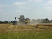 Harvesting the Wheat in Graham Lark's field off Pymoor Lane 2014