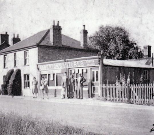Saberton Stores (circa 1951)