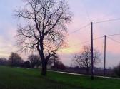 Sunrise in Pymoor seen from the Old Mill in Pymoor Lane, Nov 2014