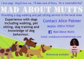 Alice Palmer of Pymoor, provides a dog walking and pet sitting service in the local area, 2014