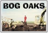 Bog Oaks
