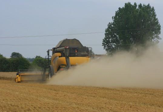 Harvesting Wheat in a field off Pymoor Lane, Pymoor, 2015