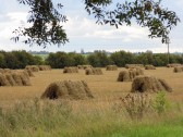 Straw Bales, stacked in a field off Pymoor Lane, Pymoor, 2015