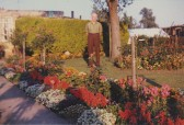 Sid Dewsbury in the garden of his house on the corner of Pymoor Lane and Main Street, Pymoor, circa 1968