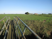 Footbridge over Main Drain, Dunkirk, near Pymoor, 2010
