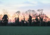 Sunset at Oxlode Farm, Pymoor, 2015
