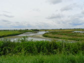 A view from the Hide at Widgeon House, Dunkirk, near Pymoor, 2016