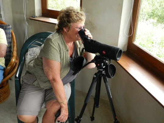 Cynthia Parson takes a closer look at the wildlife from the Hide at Widgeon House, Dunkirk, near Pymoor, 2016