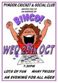 It's Bingo Night at the Pymoor Cricket and Social Club on Wednesday 25th October 2017 at 7.30pm. All Welcome