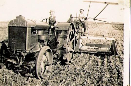 Binding wheat at Ramsey Mereside.