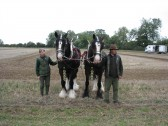 Fred & Mary (the horses) waiting to plow at the Ramsey Rural Museum Country Fair
