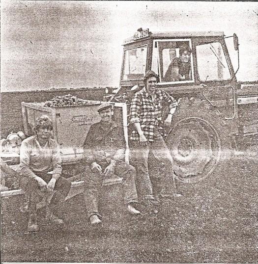 Jack Tingey & sons Peter Mikle & Christopher.att Mereside farm,