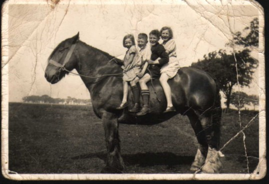 Howard family on horse back at Ramsey Merside Farm.  Joan, Alfred, Ted & Connie.