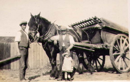 Arthur Bishop with horse and cart.