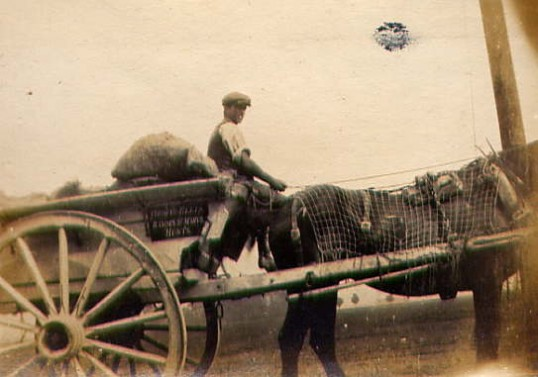Horse and Cart at Mere Farm, Ramsey Forty Foot