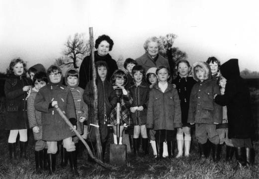 Tree Planting by Children from Ramsey Infants School