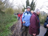 JLP Ramblers walking part of the Test Way to Longstock Water Gardens