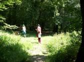 Walking through Aversley Wood Sawtry
