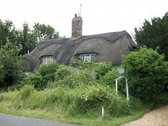 16th Century cottage High Haden Road Glatton.The garden is a bit overgrown, needs a gardener.