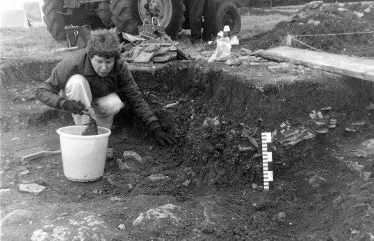 St. Judith's Archaeological Dig Sawtry.(Volunteer engrossed in her work.)