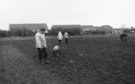 First ever field walk in Sawtry by the Archaeological Society.